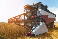 Chiuda sul lavoro di una mietitrebbiatrice su un giacimento di grano un giorno soleggiato Immagini Stock Libere da Diritti