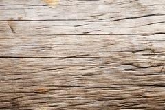 Fine del tronco di albero su Fotografia Stock