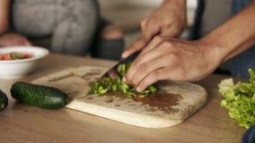 Chiuda sul metraggio del movimento lento di giovane lattuga di taglio del tipo del mulatto per insalata, facente il pranzo con la archivi video