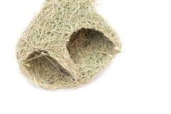 Chiuda sul nido dell'uccello del tessitore di Baya Immagini Stock Libere da Diritti