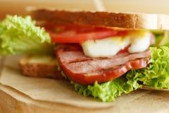 Chiuda sul panino succoso con bacon, gli ortaggi freschi, l'insalata verde e le linee scure dopo la griglia fotografia stock