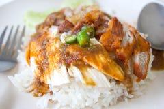 Chiuda sul riso del flusso con il pollo mixed Immagini Stock