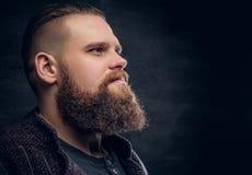 Chiuda sul ritratto del maschio barbuto brutale fotografie stock libere da diritti