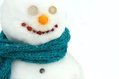 Chiuda sul ritratto del pupazzo di neve Fotografia Stock