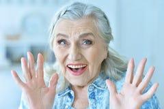 Chiuda sul ritratto della donna senior felice a casa Fotografie Stock