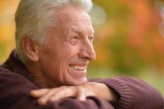 Chiuda sul ritratto di posa dell'uomo senior Immagine Stock Libera da Diritti