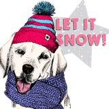 Chiuda sul ritratto di vettore del beanie e della sciarpa d'uso del cane di labrador retriever Umore di modo dello sci Skecthed h Fotografia Stock Libera da Diritti