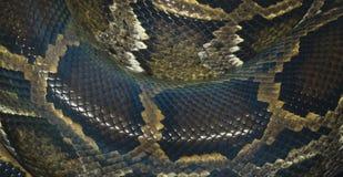 Chiuda sul serpente del nero della pelle Immagine Stock