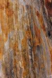 Chiuda sul vecchio fondo di legno di struttura della tavola fotografia stock
