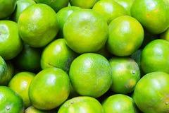 Chiuda sull'arancia verde Immagine Stock