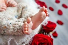 Chiuda sull'immagine dei piedi neonati del bambino Immagine Stock