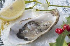 Chiuda sull'immagine dell'ostrica e Natale vischio e ramo dell'agrifoglio fotografia stock libera da diritti