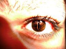 Chiuda sull'occhio Fotografie Stock