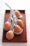 Chiuda sull'uovo in cucchiaio Fotografie Stock Libere da Diritti