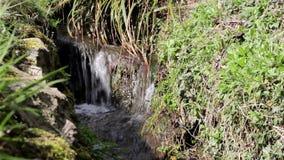 Chiuda sulla Banca di Mini Water Falls Past Grass di flussi di corrente stock footage
