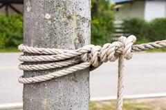 Chiuda sulla corda legata intorno ad un tronco di albero davanti a sfondo naturale vago fotografia stock libera da diritti