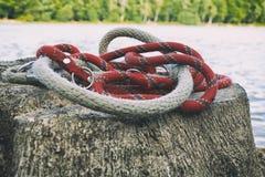 Chiuda sulla corda sul ceppo vicino al fiume ed alla foto sbiadita foresta del collare della corda in autunno vicino al lago Cord Immagine Stock Libera da Diritti
