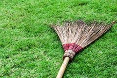 Chiuda sulla fioritura sporca della noce di cocco del gambo su erba verde Fotografia Stock Libera da Diritti