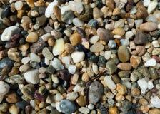 Ciottoli sulla spiaggia Fotografie Stock Libere da Diritti