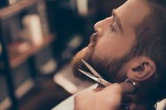 Chiuda sulla foto potata di profilo di una designazione di una barba rossa Così t Fotografie Stock