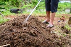 chiuda sulla natura di agricoltura biologica del fertilizzante del suolo Fotografia Stock