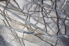Struttura della roccia Fotografie Stock Libere da Diritti