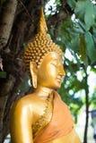 Chiuda sulla statua di Buddha dell'oro Immagini Stock
