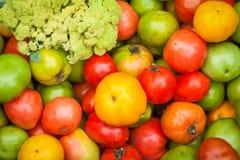 Chiuda sulla verdura fresca Immagini Stock Libere da Diritti