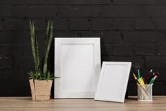 chiuda sulla vista dei telai, delle matite e della pianta vuoti della foto in vaso da fiori fotografia stock libera da diritti