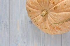 Chiuda sulla vista della zucca su fondo di legno blu Pictu di stagione Immagini Stock Libere da Diritti
