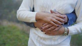 Chiuda sulla vista di maschio e le mani femminili si accarezza 4K stock footage