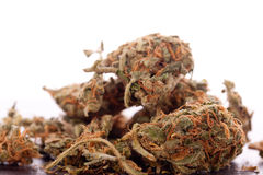 Chiuda sulle foglie secche della marijuana sulla Tabella fotografie stock libere da diritti