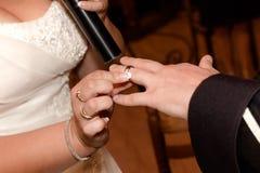 Chiuda sulle mani della sposa e dello sposo che mettono sull'le fedi nuziali Fotografia Stock Libera da Diritti