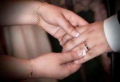 Chiuda sulle mani della sposa e dello sposo che mettono sull'le fedi nuziali Immagini Stock