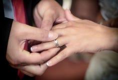Chiuda sulle mani della sposa e dello sposo che mettono sull'le fedi nuziali Fotografie Stock
