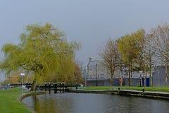 Chiusa in canale di Dublino con gli alberi verdi della molla immagine stock