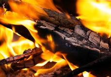 Chiuso su fuoco di accampamento Fotografia Stock Libera da Diritti