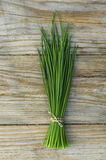 Chive. Fresh chive on wooden background stock images