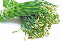 Chive. Two bunches of fresh organic chive stalks with flowers royalty free stock photography