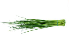 Chive. Is bound in bunch isolated on white background Royalty Free Stock Photos