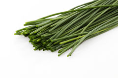 Chive bottoms. Some cutted chive bottoms on white background royalty free stock photos