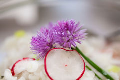 Chive flowers on radish salad Royalty Free Stock Photography