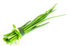 Chive. Green fresh chive on white background stock photography
