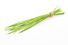 Chive isolated. Organic chive bound with brown natural rope isolated on white background. Culinary aromatic herb stock image