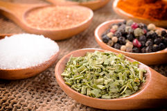 Chive spice Stock Images