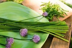 Chives на зеленой плите Стоковое фото RF