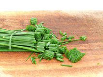 Chives Royalty Free Stock Photos