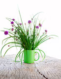 Chives. In a cup on a rustic table Stock Images