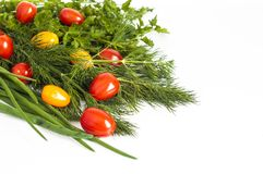 Chives, dill, green parsley with cherry tomatoes royalty free stock photography