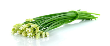 Chives flower or Chinese Chive isolated on white background.  stock photo